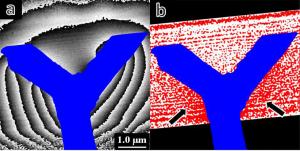 (a)Y字型に加工されたエポキシ樹脂試料周辺の電位分布を示す位相再生像。 (b)二階調化した振幅再生像。画像の青色領域は試料形状を示す。