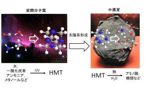 HMTは星間分子雲での光化学反応により小さな分子から形成され、太陽系の構成成分となった。⼩惑星上でのプロセスでホルムアルデヒドとアンモニア、さらにアミノ酸や糖など、種々の有機分子が生成される