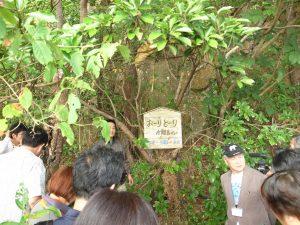 JIBSN竹富セミナーでの西表島巡検の様子