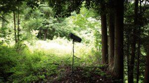 UAVによる森林領域の抽出