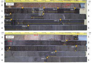 北海道・奥尻島ワサビヤチの沖積層において掘削したコア試料に挟在する津波堆積物