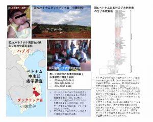 ベトナムにおけるジカウイルス流行実態調査