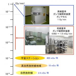 放射線研究に使用する照射装置