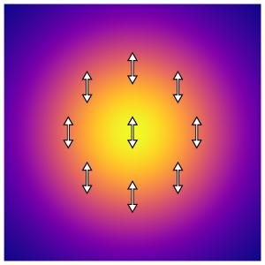 直線偏光の強度・偏光分布