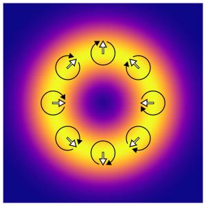 光渦の強度・偏光分布