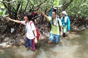 琉球大学の全学部全学年を対象とした実習、亜熱帯-西表の自然の実習風景。