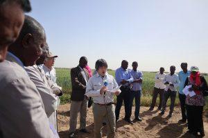 スーダンでの研究成果発表の様子
