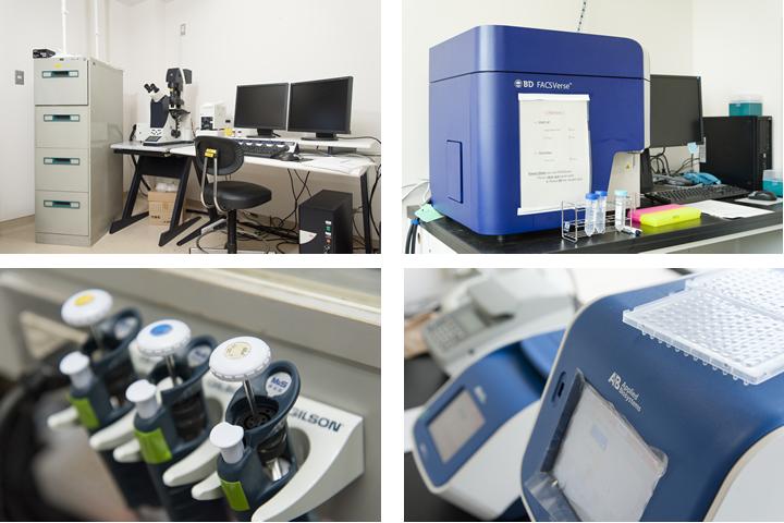 研究室には細胞を計測するフローサイトメーター、リアルタイムPCR装置など、さまざまな分析機器、顕微鏡が所狭しと並ぶ。