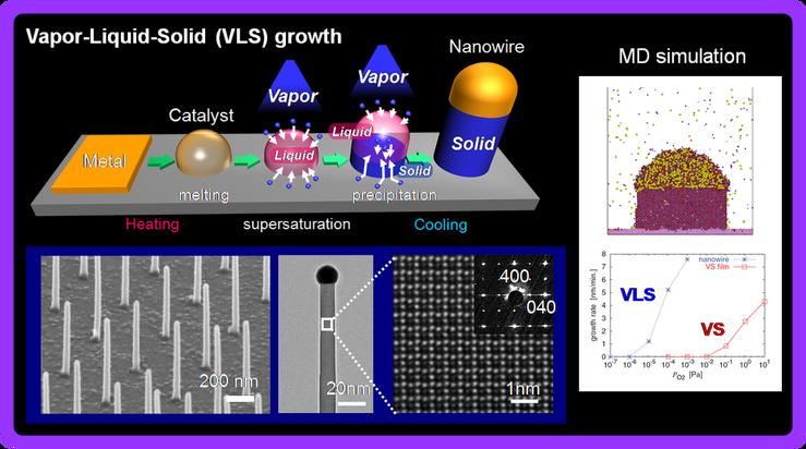 「気液固(Vapor-Liquid-Solid:VLS)成長法」の模式図(図中左上・右上)と、それによってつくられた「ナノワイヤ」の電子顕微鏡写真(図中左下)。直径20nmに満たないワイヤが、いくつも直立しているのが分かる。(図版は柳田教授提供。以下同じ)