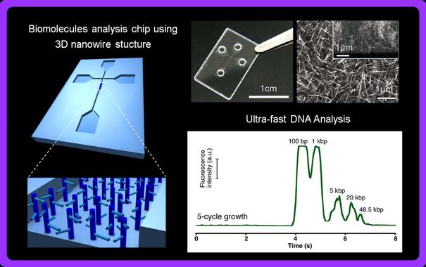 超高速でDNA(デオキシリボ核酸)の解析が可能なマイクロチップのイメージ図(図中左上)。幅数十μmのチップの窪みの部分には、枝を生やしたナノワイヤがぎっしりと並ぶ(図中左下)。この3次元構造でDNAを捕捉し、ナノワイヤの物性で塩基の違いを見分ける。図中右上の写真は、チップの現物(左)と、窪みを電子顕微鏡で見たナノワイヤ構造体(右)。図中右下のグラフは、DNA解析のスピードを示す。48.5k(=4,850)塩基対を7秒ほどで解析していると読み取れる。