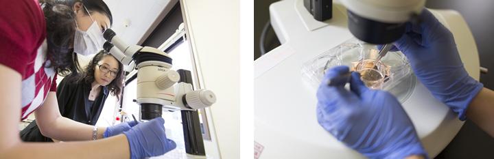 研究室にはそれぞれの研究テーマに没頭する学生が、時に本橋教授と肩を並べ、作業を続けている。