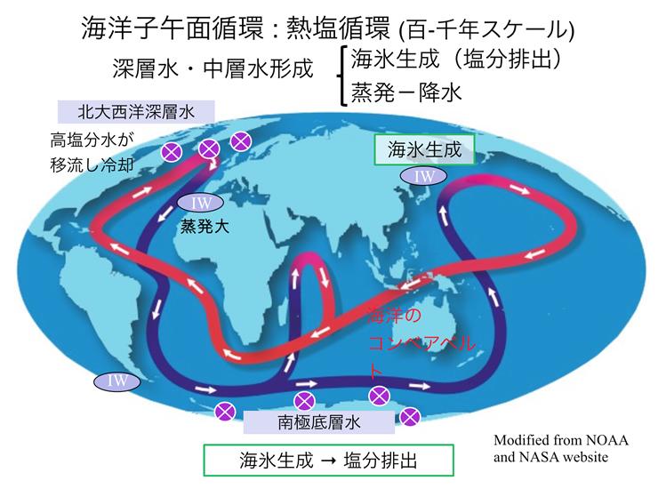 紺色が冷たい深層海流、赤色が温かい表層海流を表す。北大西洋グリーンランド沖と南極海で沈み込んだ重く冷たい水が、海底付近を循環した後、インド洋と太平洋で上昇して地球を循環している。