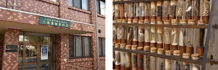富山大学和漢医薬総合研究所附属の民族薬物研究センター民族薬物資料館。館内には約28,000点の生薬が所蔵されており、全国からサンプル提供の依頼が届く。
