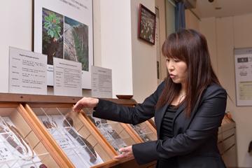 民族薬物資料館に展示される「補気薬」の解説をする東田准教授。研究に用いた「加味帰脾湯」には、「補気薬」の生薬が多数配合されている。