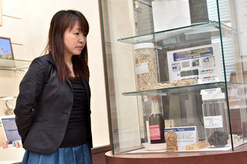 民族薬物資料館に展示される「アシュワガンダ」と、それを眺める東田准教授。「アシュワガンダ」に含まれる成分から新化合物「デノソミン」を合成し、損傷した脊髄を修復させる働きがあることを確認した。