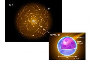 図1 <原子・原子核の構造> 原子の中心にはその質量のほぼ100%を占める原子核が存在し、その周りを電子が雲の様に取り巻いている。原子核は陽子と中性子が集まってできている。陽子と中性子は粒の様に描かれることが多いが、実際には原子核全体に広がった液体のイメージの方が近い。上の原子核の図は、重い原子核の例。後述のように重い原子核は一般に周囲が中性子で覆われている。軽い原子核には「中性子の皮」はない。(民井准教授提供)