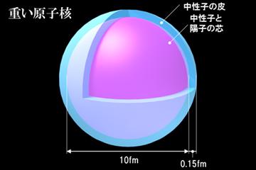 図2 鉛208の原子核にエネルギー300MeVの陽子ビームを当てたときの応答の様子。横軸が、陽子が与えたエネルギーで、縦軸が原子核の反応の大きさ。与えたエネルギーの大きいところで「巨大双極子共鳴」、低いところで「ピグミー双極子共鳴」がそれぞれ起きている。(民井准教授提供)