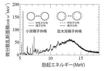図2再掲(横軸が陽子が与えたエネルギーの大きさで、縦軸が、その事象がどれだけの頻度で生じたかに相当する)
