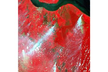衛星画像による火災とヘイズの検出。(写真提供:甲山准教授)