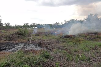 住民は乾期に野焼きを行うが、乾燥がすすんでいるために一気に燃え広がる危険性がある。(写真提供:甲山准教授)