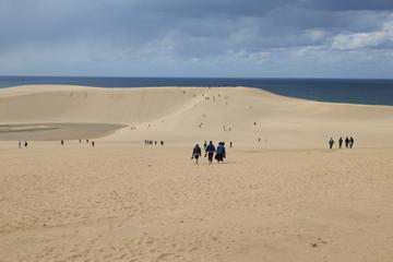 乾燥地研究センターの東側に広がる、鳥取砂丘。戦前はセンターが今ある場所も砂丘の一部だった。