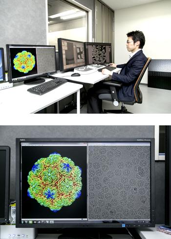 クライオ電子顕微鏡で観察した蛋白質の画像。右の白黒の画像に多数映っている細胞の方向や向きを揃えてデータ処理することにより、左のような原子一つ一つの位置まで確認できる詳細な画像が得られるようになった(画像は、蛋白質研究所の岩崎憲治准教授、宮崎直幸特任助教、中川敦史教授によって解析されたもの)。