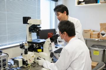 日々の地道な研究が、画期的な成果につながる。顕微鏡による緻密な観察は、研究の第一歩だ。