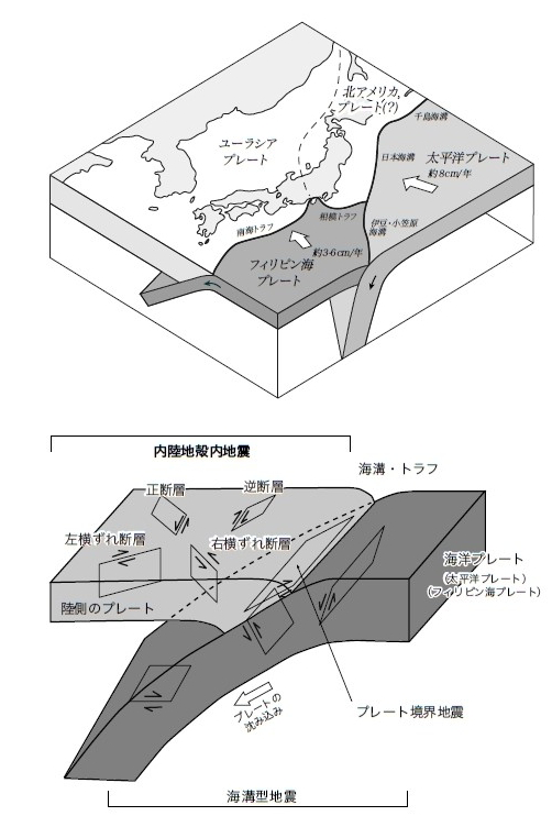 図1 日本は三つのプレート(太平洋プレート、フィリピン海プレート、ユーラシアプ レート)がちょうど交わる場所にある。東日本大震災は、太平洋プレートによって海底に 引きずり込まれたユーラシアプレートが跳ね戻ることによって生じた。「活断層は、陸のプ レート上にある小さな傷のようなものです」(遠田教授)。(図:遠田教授提供)