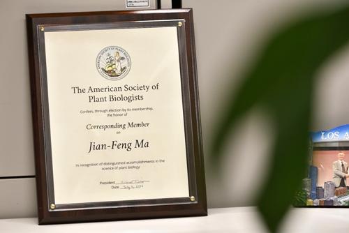 研究室には、アメリカ植物生物学会(The American Society of Plant Biologist)から贈られた『Corresponding membership Award』の楯が飾られている。