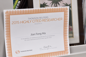トムソン・ロイター社から贈られた「2015年高被引用論文著者:論文の引用動向分析による、影響力の高い科学者」の表彰状
