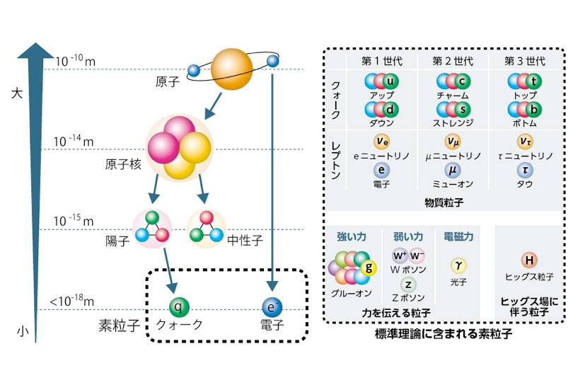 (左図)分子>原子>原子核・電子>核子(陽子・中性子)の階層構造の概念図。人類は、物質の根源を探り続けてきた。(右図)標準理論で想定されている17の素粒子。(図はともに東京大学素粒子物理国際研究センター提供)