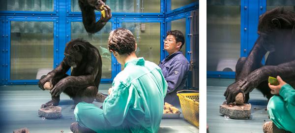 ナッツ割りに興じるハツカと、その様子を見守る平田教授と森村准教授。