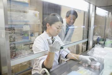 細胞の培養液をつくる研究室の学生。細胞死の研究にとって、細胞培養は不可欠なプロセスであり技術だ。