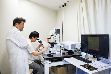 蛍光顕微鏡で細胞の状態を見る研究支援員。細胞死やオートファジーの研究には、光学顕微鏡や電子顕微鏡が不可欠だ。
