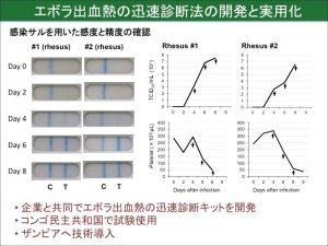 エボラ出血熱の迅速診断法の開発と実用化