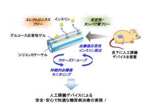 人工膵臓デバイスによる安全・安心で快適な糖尿病治療の実現