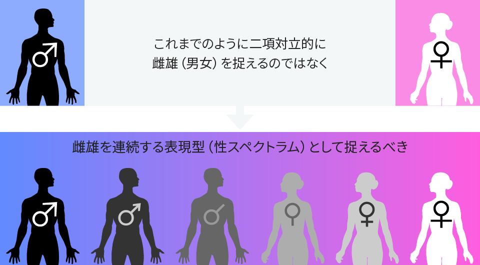 性スペクトラムの概念図。雌雄だけではなく、雌に近い雄、雄に近い雌など、間の性が存在する。(新学術領域研究「性スペクトラム−連続する表現型としての雌雄」のHP http://park.itc.u-tokyo.ac.jp/sexspectrum/ より引用)