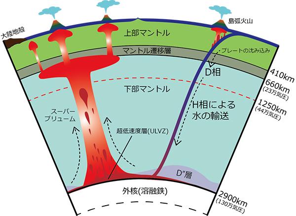 含水鉱物(DHMS)による地球内部の水輸送。D相がH相に相転移し、マントルと核の境界にまで含水鉱物が達する可能性がある。「超低速度層(ULVZ)」とは地震波が極端に遅くなる層のこと。核との境界付近でH相が脱水分解され、水の存在により地震波伝達速度が落ちる可能性が指摘されている。核との境界付近からマグマが上昇する「スーパープリューム」も、やはり水の存在による影響が指摘されている。