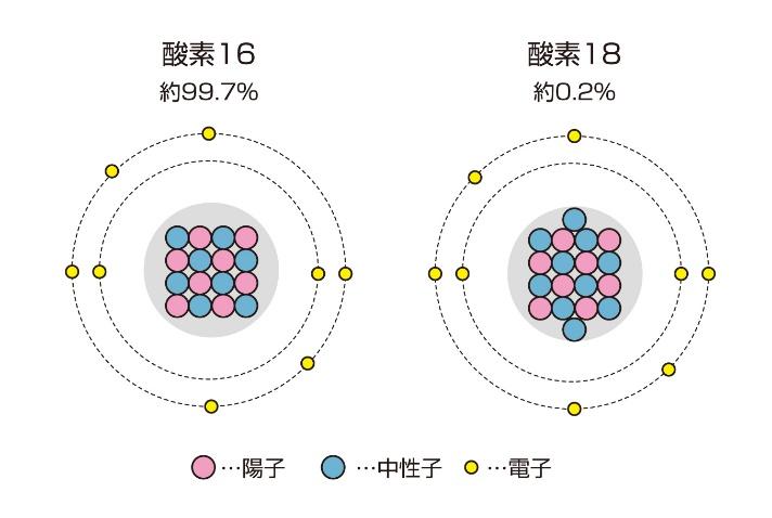 図1:酸素の同位体である酸素16と酸素18。酸素18は酸素16よりも中性子を2つ多く持つために、酸素16よりも重くなる。