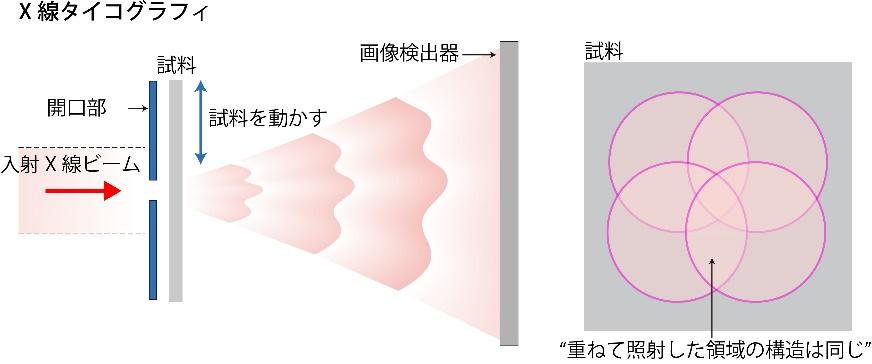 """X線タイコグラフィの模式図。平面波照明型コヒーレントX線回折イメージングもX線タイコグラフィもともに、スクリーン上に描かれた回折強度パターンから試料の像を再生する。ただ回折強度パターンは、試料の像を得るために必要な、X線の位相(波の山と谷)の情報が欠落している。その情報の回復にはフーリエ変換が用いられるが、その計算の際、何らかの条件のようなものが必要になる。平面波照明型コヒーレントX線回折イメージングの場合は、X線照射時に""""試料の周りには何もない""""というのがその条件となり、X線タイコグラフィの場合は、試料を動かして複数回照射する際に""""重ねて照射した領域の構造は同じである""""という情報を用いる。"""