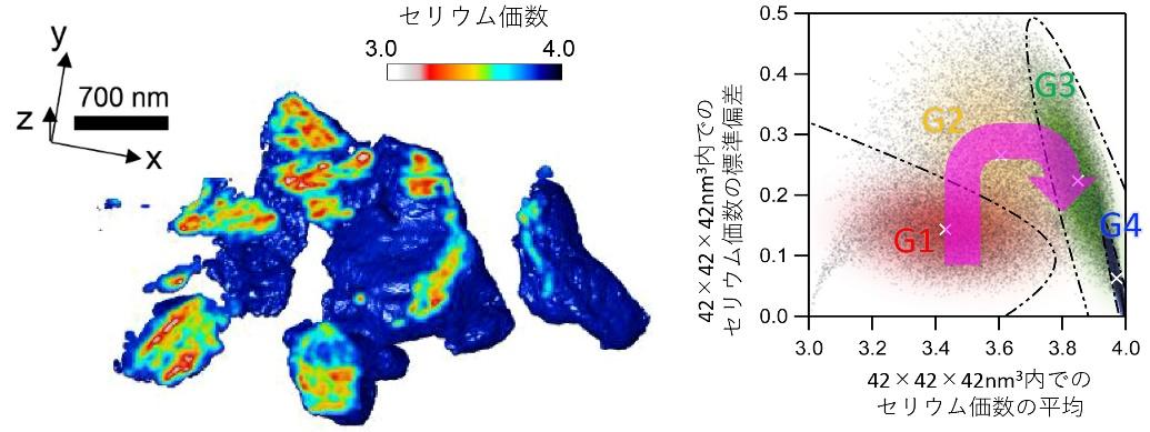 (左)助触媒の中でのセリウムの価数を3次元で表した図。赤い部分、青い部分は、それぞれ酸素が3価、4価であることを示す。(右)機械学習によって推測された助触媒内部の酸素の伝搬の様子。酸素が、その状態から異なる4つのグループ(G1~G4)に分けられ、互いの関係性から図の矢印のように酸素が伝播されたという推測が得られた。