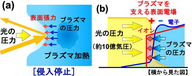 (a)光がプラズマとその表面張力によって押し返される模式図。(b)(a)を側面から見た図。プラズマの表面に生じる電場が表面張力として働き、光による押し込みを止めている。(岩田准教授提供)